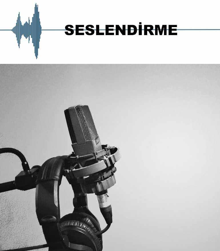 seslendirme-sanatcilari-subbanner-hover