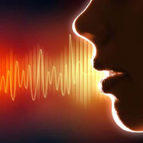 arapca-seslendirme-sesizi