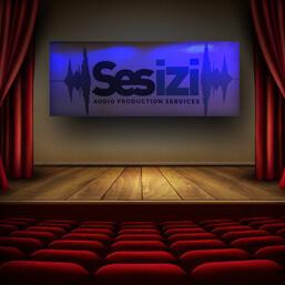 Seslendirme ve Tiyatro (1)